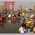 2018年浜名湖弁天島の潮干狩りが再開!期間や料金、予約方法